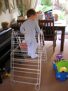 Small climbing on clothes airer